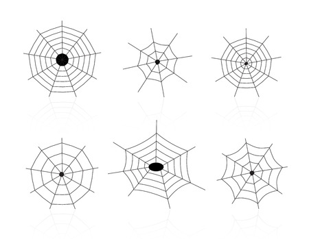 spider webs: Collection of different shaped spider webs isolated on white background