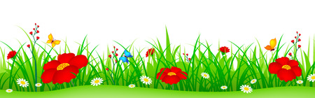 Green grass with cute colorful spring flowers illustration isolated white background. Can use as web site header / Footer / banner. flower bed Vectores