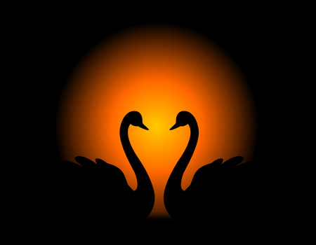 wedlock: Silhouette of a loving swan couple looking at eachother on a sunset background Illustration