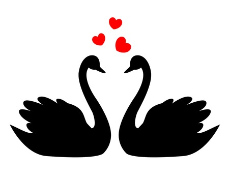 Swan couple in love illustration / clipart isolated on white background. Can use as wedding invitation cards , wedding / love related designs