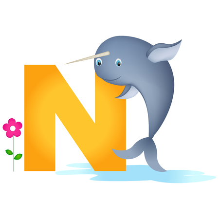 flash card: Colorful animal alphabet letter N with a cute narwhal flash card isolated on white background