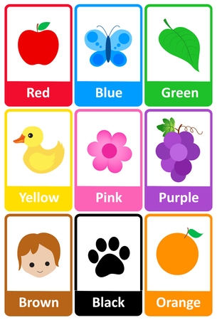 preescolar: Colección de tarjetas flash para imprimir los colores y sus nombres con imágenes coloridas para preescolares  niños de jardín de infantes Vectores