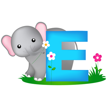 phonetic: Colorful animal alphabet letter E with a cute elephant flash card isolated on white background