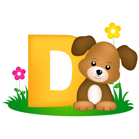 flash card: Colorful animal alphabet letter D with a cute dog flash card isolated on white background