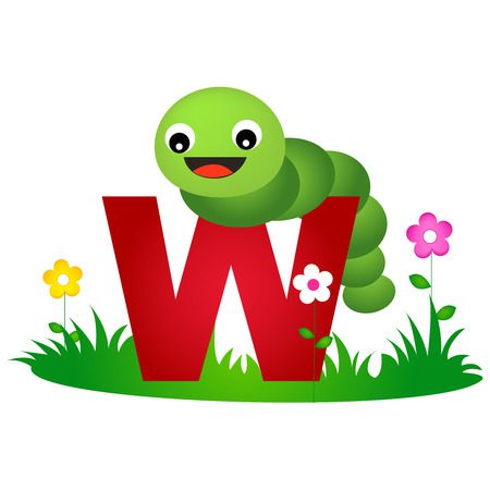 gusano: Colorido carta alfabeto animal W con una tarjeta linda del flash gusano aislado en fondo blanco
