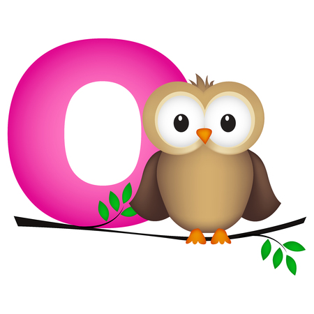 flash card: Colorful animal alphabet letter O with a cute owl flash card isolated on white background