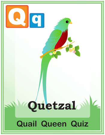 Animal alphabet with cute animals and capital and simple letters with similar words illustration. Specially for preschool children learning books. Ilustração