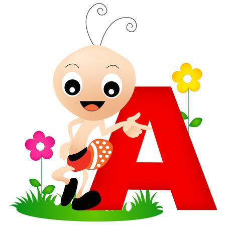 hormiga: Carta colorido alfabeto animal A con una linda tarjeta flash hormiga aislada en el fondo blanco