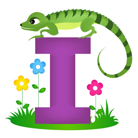 flash card: Colorful animal alphabet letter I with a cute iguana flash card isolated on white background