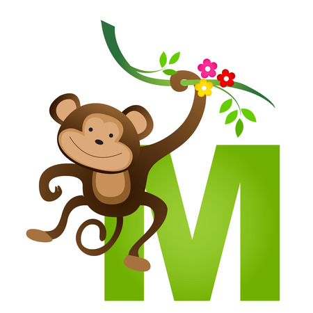 flash card: Colorful animal alphabet letter M with a cute monkey flash card isolated on white background