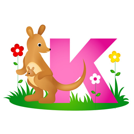 phonetic: Colorful animal alphabet letter K with a cute kangaroo flash card isolated on white background