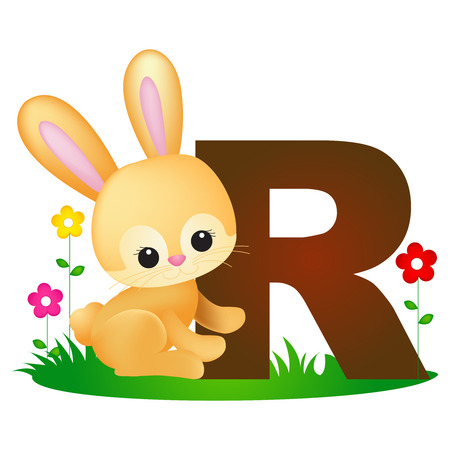 flash card: Colorful animal alphabet letter R with a cute rabbit flash card isolated on white background