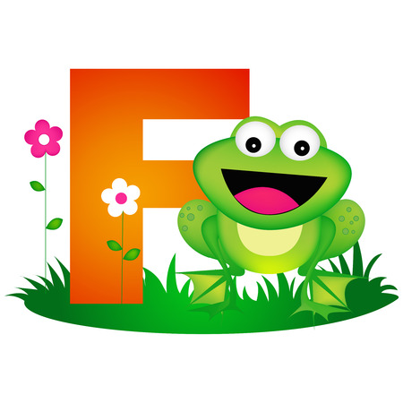 phonetic: Colorful animal alphabet letter F with a cute frog flash card isolated on white background