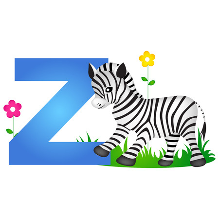 phonetic: Colorful animal alphabet letter Z with a cute zebra flash card isolated on white background Illustration