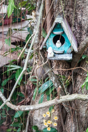 orchid house: Wooden bird house and yellow wild orchid Stock Photo