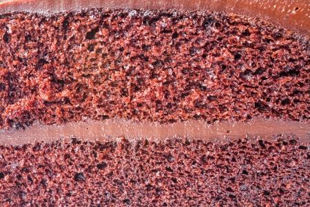 Close up sponge of chocolate custard cake