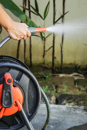 watering plant: Watering plant in home garden, stock photo Stock Photo