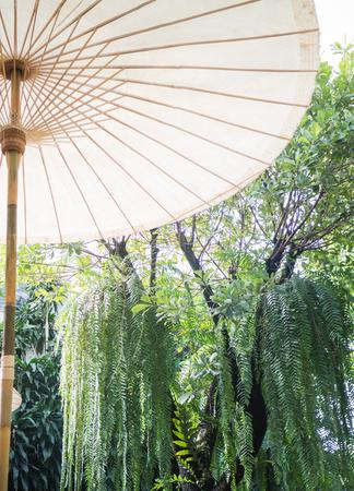 spokes: Vintage outdoor cotton umbrella with wooden spokes Stock Photo