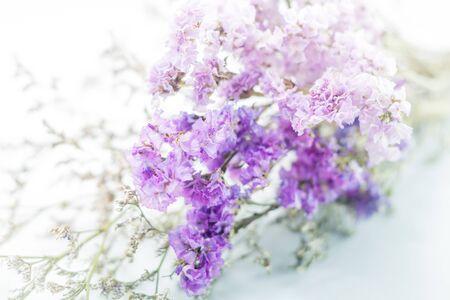dried flower arrangement: Beautiful statice flower bouquet on white background