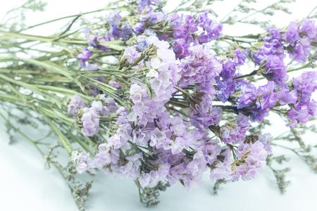 dried flower arrangement: Beautiful statice flower bouquet on white background, stock photo