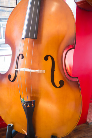 symphonic: Violin orchestra musical instrument in the shop, stock photo