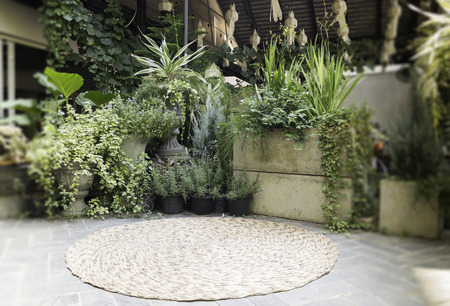 Variety green plant pots display in the garden, stock photo Standard-Bild