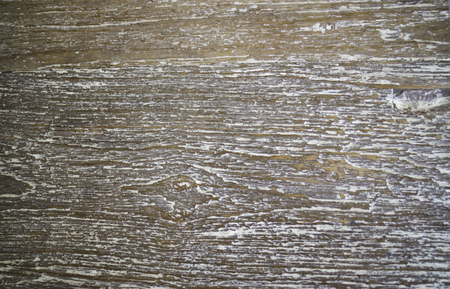 Natural wood texture background board, stock photo