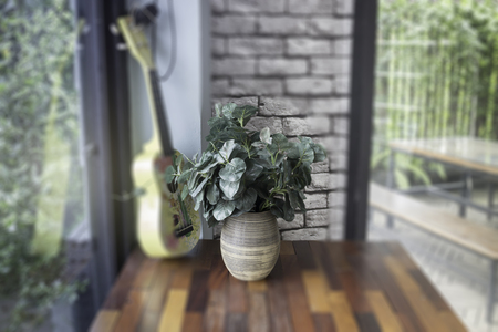 Minimal green plant in pot on table, stock photo