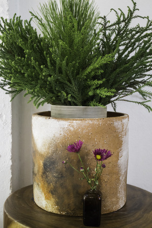 Cray green plant pot and flower bottle, stock photo