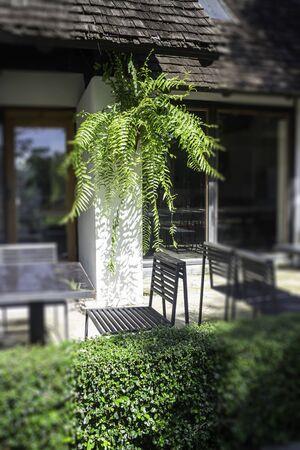 Wooden outdoors seats in summer garden, stock photo 写真素材