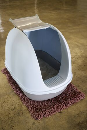 Cleaning cat litter box place, stock photo Archivio Fotografico