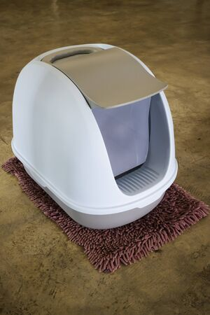 Cleaning cat litter box place, stock photo Standard-Bild