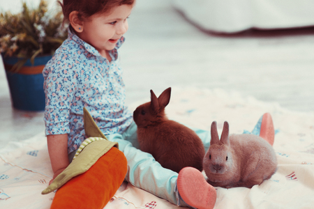 kinky: The little red-haired girl playing with rabbit in the room. The concept of happiness, joy and family values Stock Photo