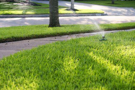 lawn sprinkler: Sprinkler on Suburbian Lawn