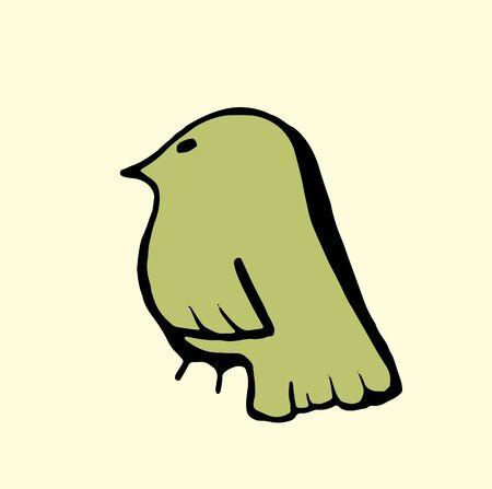 birds of paradise: bird