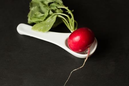 capacitance: white radish in capacitance on gray background