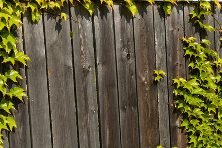 wooden fence. Wooden texture brown. for design Stock Photo