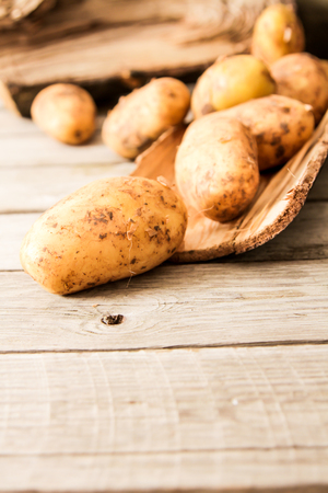the land of menu: potatoes just vykapannaya from the ground on a wooden background