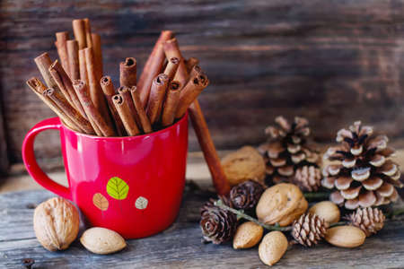 albero nocciolo: Christmas mood. cinnamon, walnuts and pine cone Archivio Fotografico