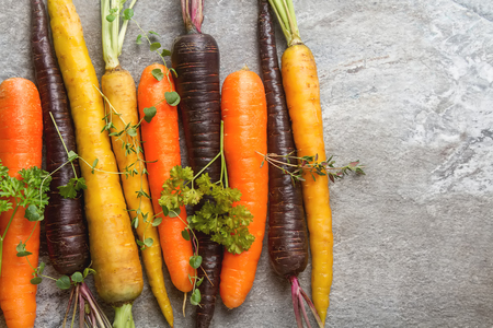 Ripe black, orange and yellow carrots with parsley and thyme. Dark stone background. Autumn harvest