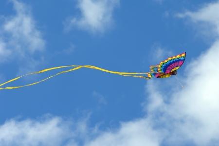 papalote: Kite mariposa magn�fico dispara contra un cielo azul vivo en el Cabo Charles, Virginia
