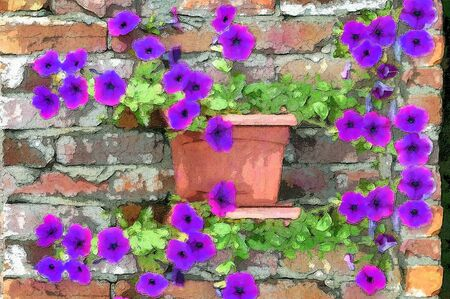 Brilliant petunias grow along an old brick wall   Rustic brick with cracked mortar sets off the glow of the purple petunias  photo