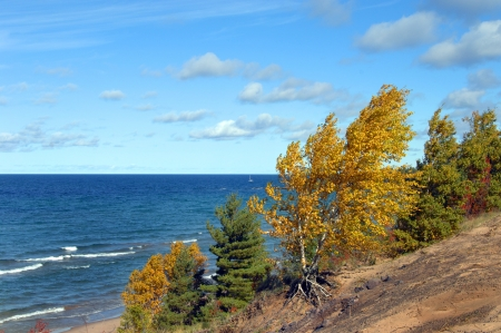 Blue horizon stretches across Lake Superior in Upper Peninsula, Michigan   Aspen besides lake turns golden and is bent by wind   Small boat bobs offshore