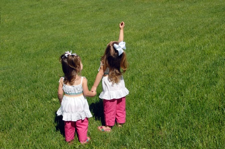 One baby explains to the other baby the plan of the universe   Two little girls explore a field full of green grass   The older points out birds in the sky to her younger sister  Banco de Imagens