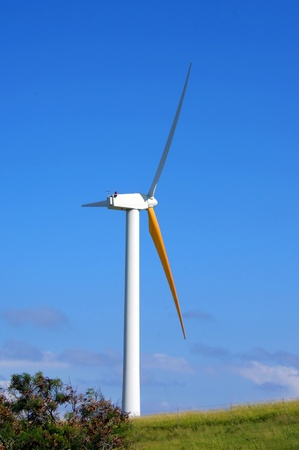 harnessing: Turbine catches the trade winds on the coast of the Big Island of Hawaii.  Huge blades catch the wind and turns it into energy.