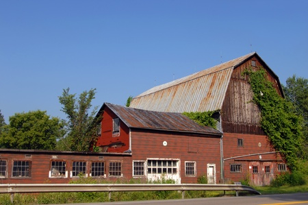 Backroads of Central New York yields this lumbering red, wooden barn with overgrowing ivy and a roadside perch. Stock Photo - 14863158