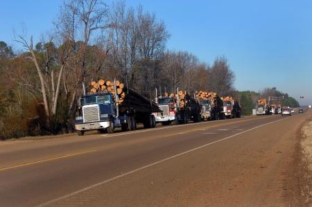 Zeven achttien wielers zijn opgesteld op de schouder van de snelweg wachten op hun beurt voor het gewicht in Alle hebben veel gehakt hout klaar voor de papierfabriek