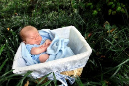 Tiny infant lays in a wicker basket surrounded by the forest and leaves of deep green   He is stretching and making a grimace  Stock Photo - 15023316