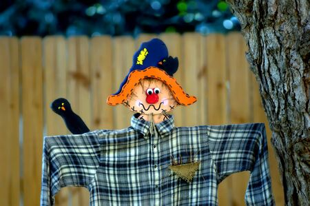 Scarecrow guards backyard with flapping plaid clad, arms   Painted wooden face with crow decorations Stock Photo - 15024579