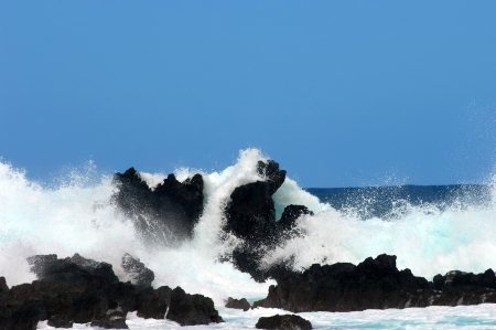 Big Island, Lauphoehoe Beach Park, has jagged crags of black lava jutting out of the ocean   Waves crash and spray against them and a vivid blue sky  photo